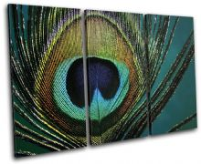 Peacock Feathers  Animals - 13-0749(00B)-TR32-LO